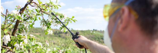 Pesticides contrefaits: une saisie record pour Europol