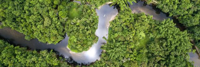 Le Brésil autorise l'exploitation minière dans la forêt amazonienne