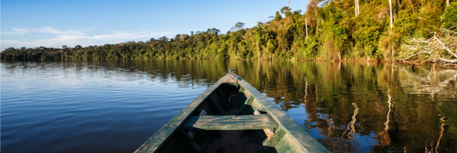Sous pression, le gouvernement brésilien annule un permis d'exploitation minière dans une réserve d'Amazonie