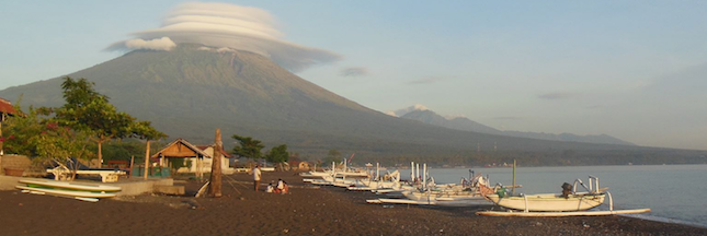 Bali: avant l'éruption du mont Agung, des ONG sauvent les animaux oubliés
