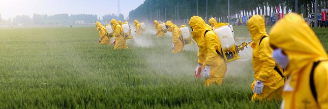Pesticides: l'ONG Générations Futures conteste l'autorisation de deux produits