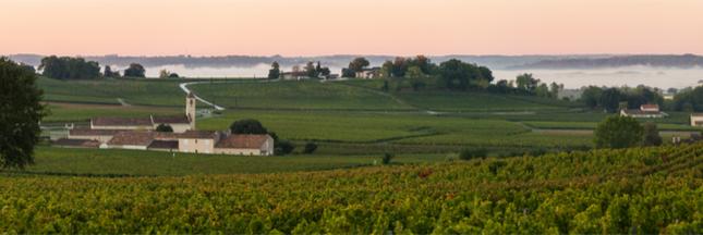 Cet automne, les routes des vins se mettent au vert