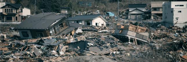 Tsunami de 2011 au Japon: 289 espèces ont traversé le Pacifique