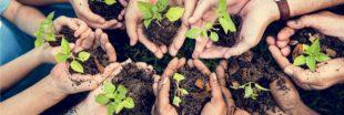 Les plateformes qui délivrent le label 'Financement participatif pour la croissance verte'