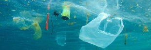RecycleToCoin : l'appli blockchain pour lutter contre le plastique dans les océans