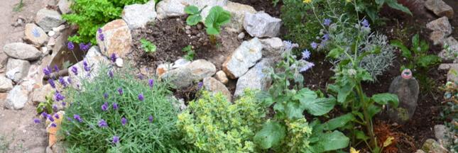 Sélection livre: la permaculture, en route vers la transition écologique