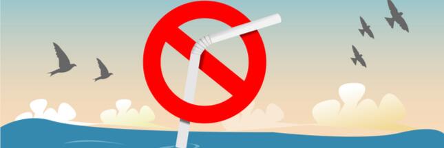 Journée internationale sans paille: dites non à la pollution plastique!