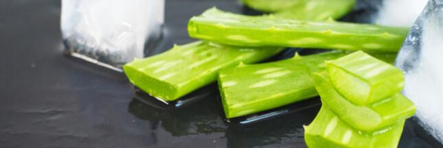 Glace à l'aloe vera: le sorbet healthy de l'été