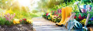 """Au jardin, des produits estampillés """"naturels"""" seraient dangereux"""