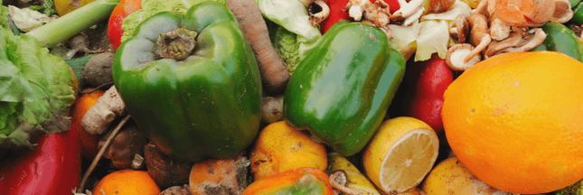 66 tonnes de nourriture gaspillée par seconde à l'horizon 2030