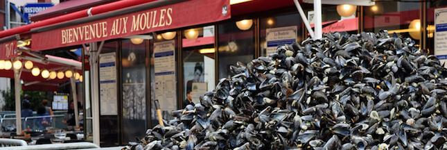 Braderie de Lille (ou pas): que faire des coquilles de moules?
