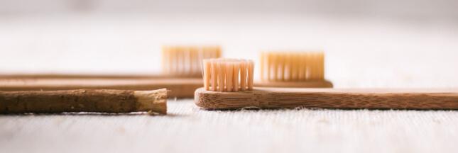 Quelle brosse à dents écologique choisir?