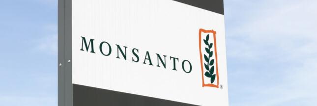 Monsanto: la justice française bloque la mise en vente du RoundUp Pro 360