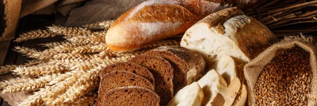 Des substances controversées détectées dans le pain