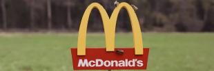Une ruche à l'effigie des restaurants McDonald's !