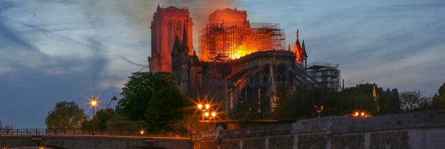 La restauration de Notre-Dame-de Paris menace-t-elle 55 arbres?
