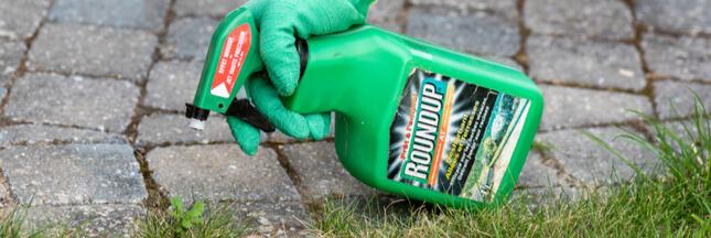 Le Roundup toujours en vente dans les jardineries?