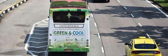 Singapour et Madrid testent les bus à toiture végétalisée