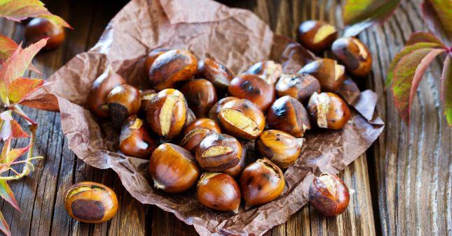Marron et châtaigne: qui est comestible, qui est toxique?
