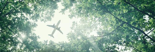 Peut-on encore être écolo et prendre l'avion?