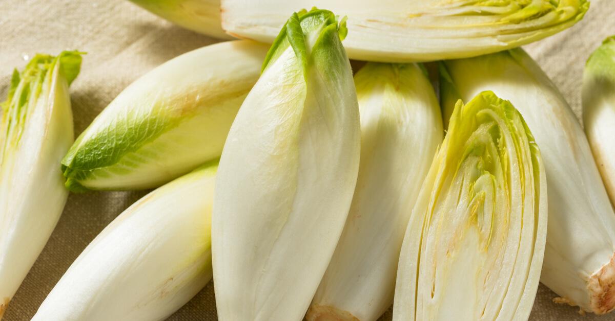 L'endive et la chicorée : comment bien les cuisiner