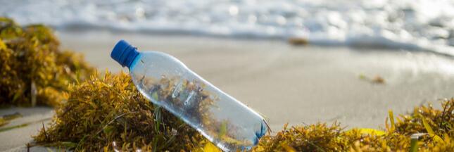 Recyclage des bouteilles plastique: la seule usine des Antilles liquidée