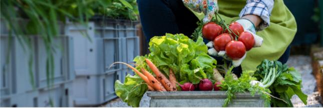 Food for good – Le plus grand concours mondial dédié à l'alimentation