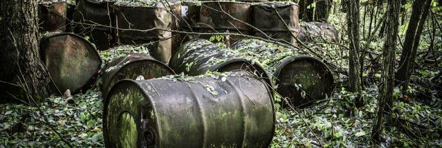 Nucléaire: certains déchets radioactifs remis dans la nature