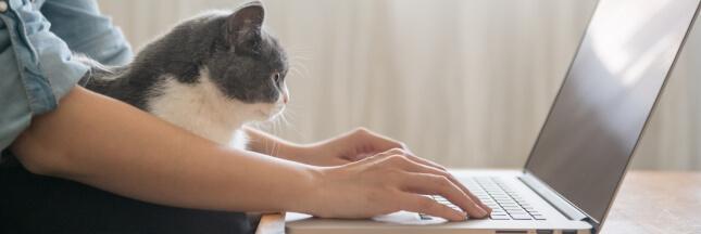 Télétravail: comment organiser un coin bureau à la maison?