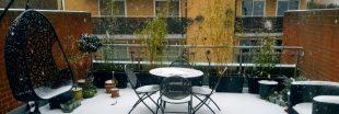 Plantes en pot - Quelles précautions prendre avant l'hiver ?
