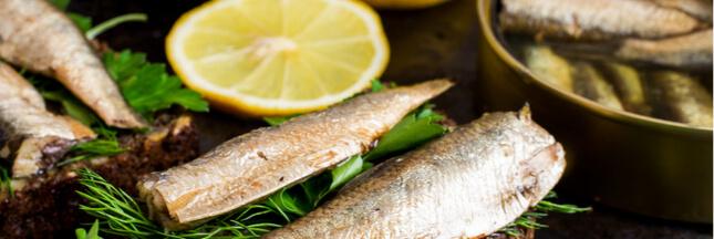 Recettes originales: que faire avec une boîte de sardines?