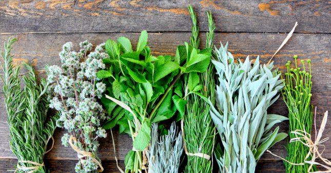 Des aromates naturels pour garder la forme!