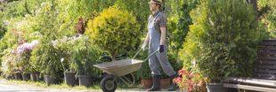 Déduction fiscale pour travaux de jardinage : comment en bénéficier ?