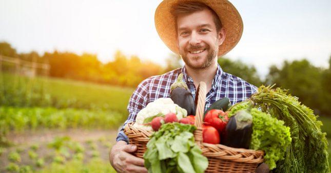 Cuisinez les fruits et légumes de saison en août: le panier AMAP