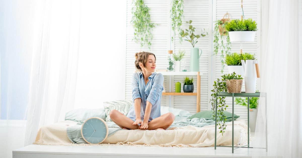 peut-on mettre une plante dans sa chambre ?