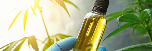 L'huile de CBD contre les douleurs: quand et comment l'utiliser?