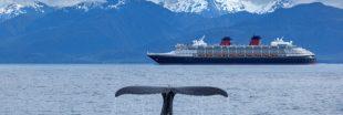 Le bruit des océans, une symphonie en danger