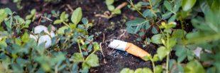 Mégots dans la nature : les cigarettiers vont devoir passer à la caisse