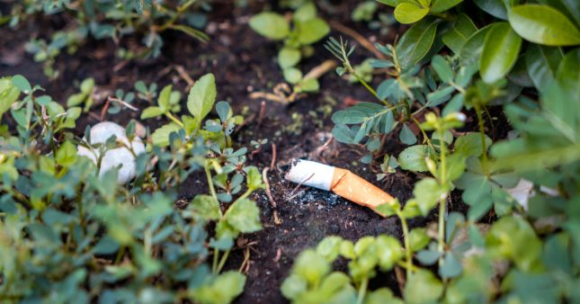 Mégots dans la nature: les cigarettiers vont devoir passer à la caisse