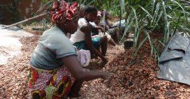 Droits des Femmes: l'École du Leadership agit en Côte-d'Ivoire