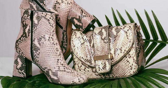 Pythons gonflés à l'air comprimé, crocodiles écorchés vifs… Les dérives de l'industrie du luxe