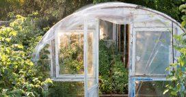 La serre: pour un jardin écoresponsable