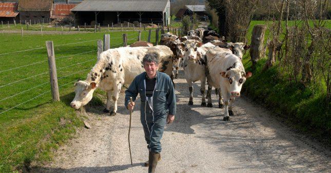 Label Max Havelaar-Fairtrade: désormais pour les agriculteurs français aussi!