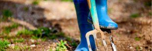 Les 10 outils indispensables du jardinier amateur
