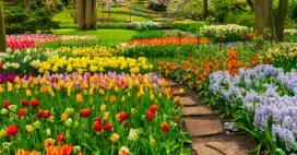 6 jardins privés très appréciés des photographes!
