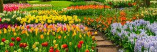 6 jardins privés très appréciés des photographes !
