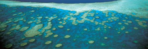 Inondations. La barrière de corail en danger ?