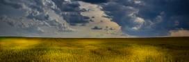 Agriculture: comment préparer la PAC de 2020?