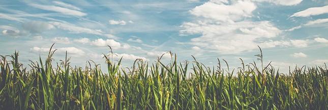 L'agriculture biologique, c'est quoi?