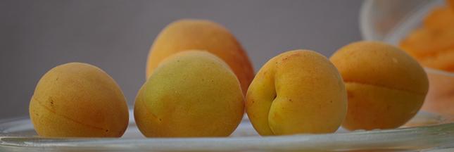 Recette Bio: Tatin aux abricots et romarin